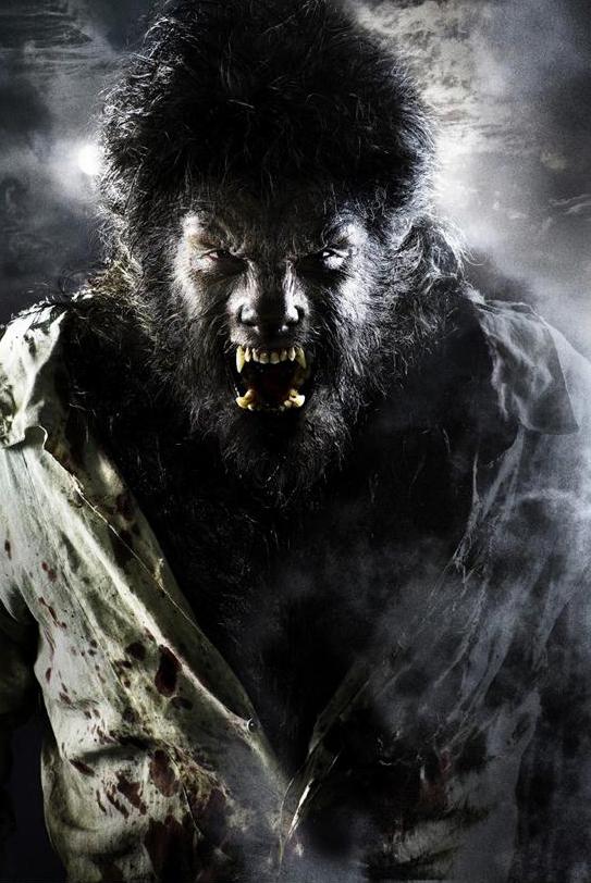 wolfman 2009 - Wolfman